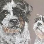 Lola and Lottie - Shuggys
